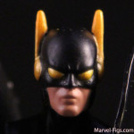 Yellowjacket-Head-Shot