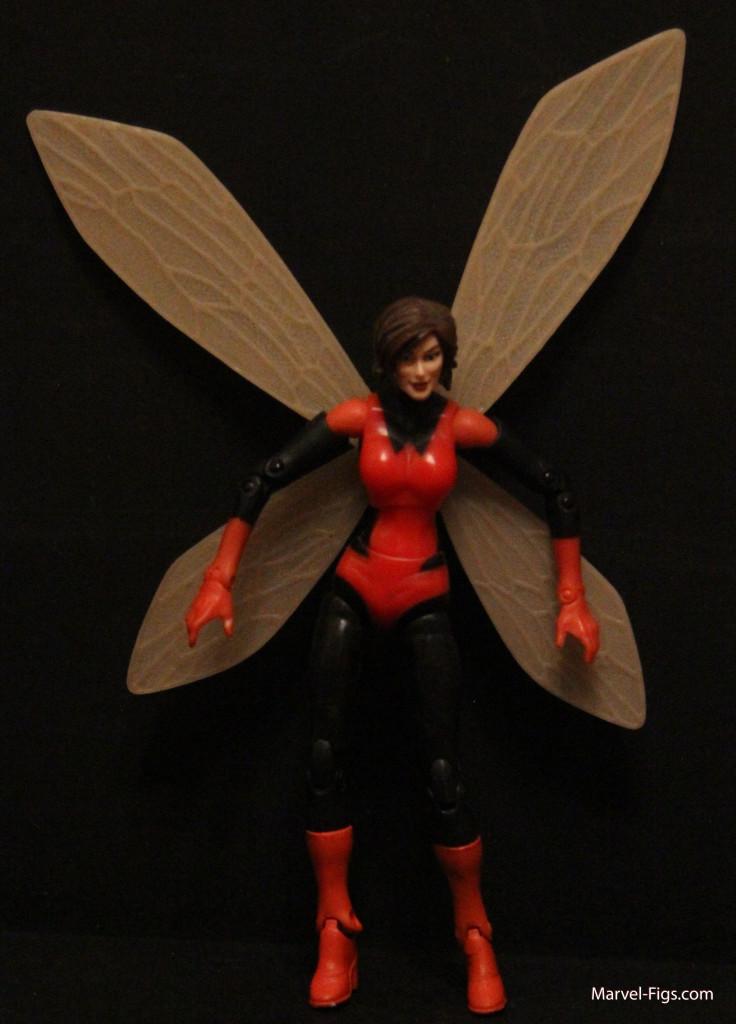 Wasp-Body-Shot